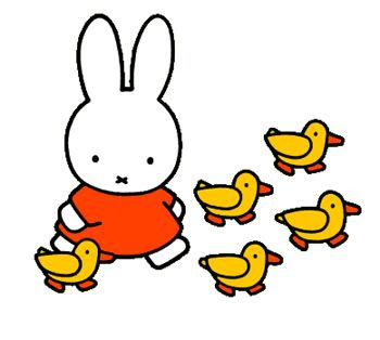 Miffy wondered if she could ever feel like she fit in.