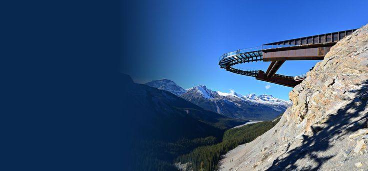 Glacier Skywalk | Brewster Travel Canada