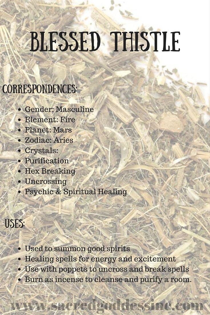 71 best magick herbs incense and oils images on pinterest magic magick herb blessed thistle bag for sale fandeluxe Choice Image