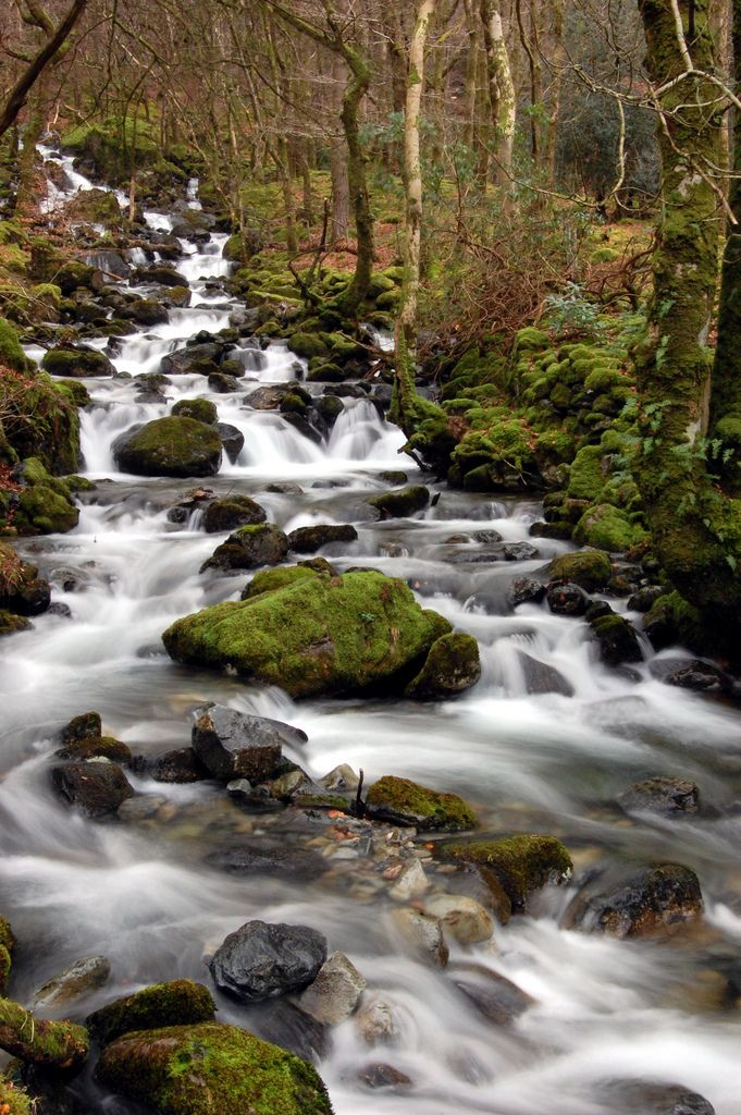 Wales - Snowdonia, Cadair Idris   by formalfallacy @ Dublin (Victor)