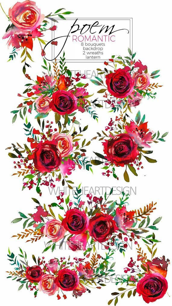 watercolor floral clipart red purple pink burgundy roses