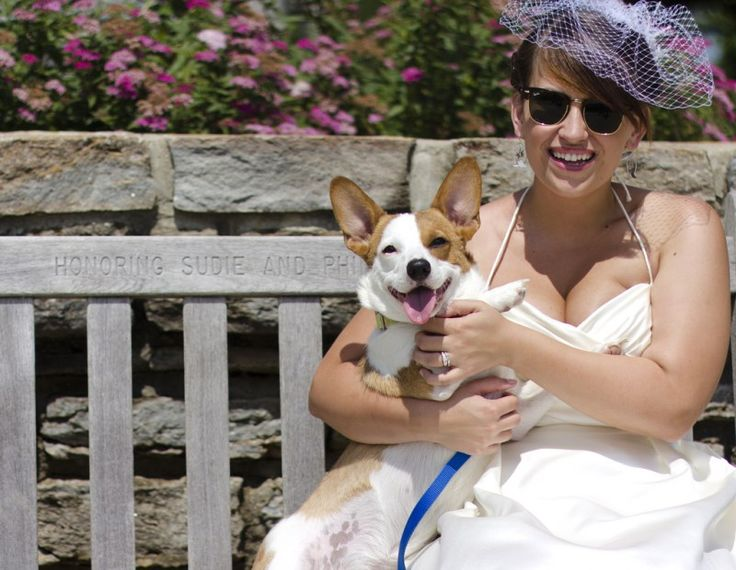 Include your other true love in wedding photos like this! - Photo from Killer shoe fashion and some puppy love by Katherine McAdoo via http://offbeatbride.com/