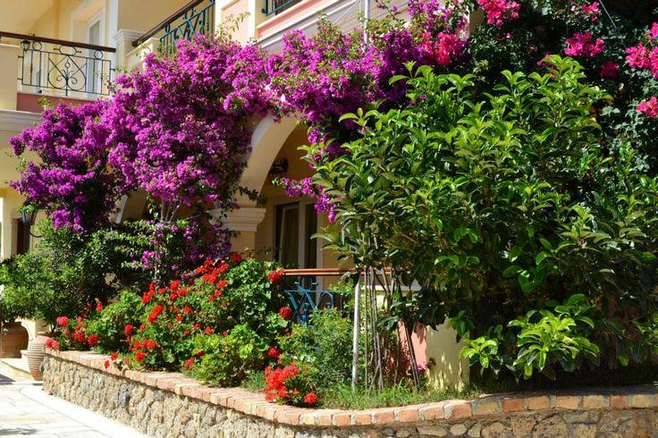 Veranda of the garden view suite