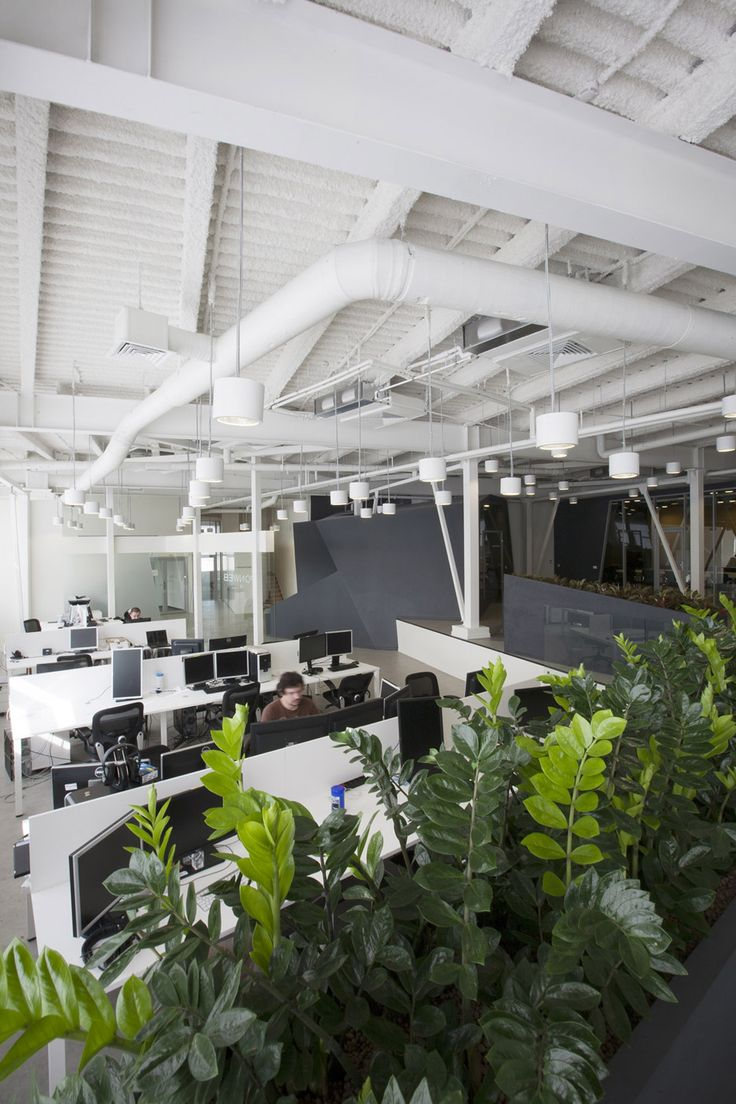 14 best green workspace images on pinterest auckland southern and workplace design - Cool office plants ...