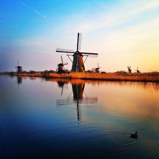 Kinderdijk nel Zuid-Holland