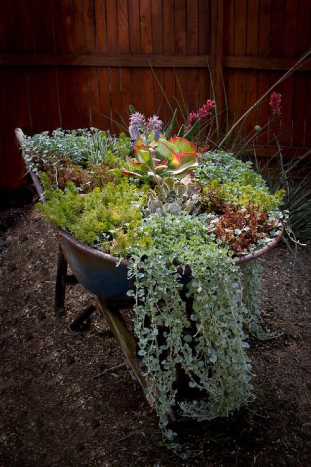 Best 25 wheelbarrow garden ideas on pinterest for Garden planter ideas