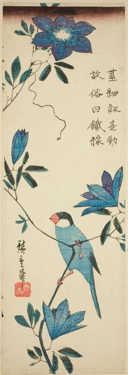 Java sparrow and clematis | The Art Institute of Chicago