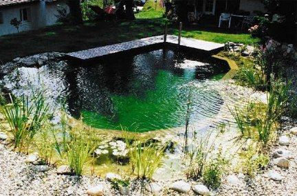 50 best pool images on Pinterest Natural swimming pools, Natural