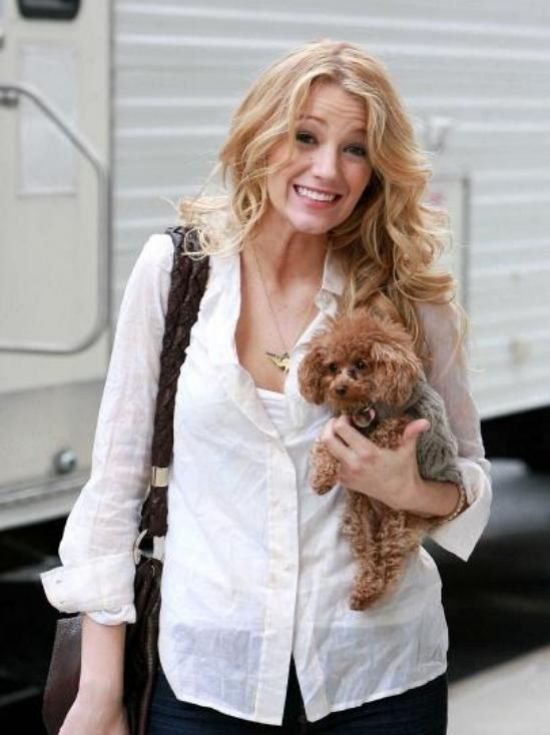 Blake Lively with doggy