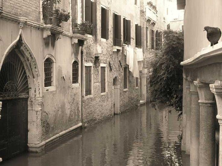 Venecia-Italia  El contraste ideal entre amor y un algo irracional.