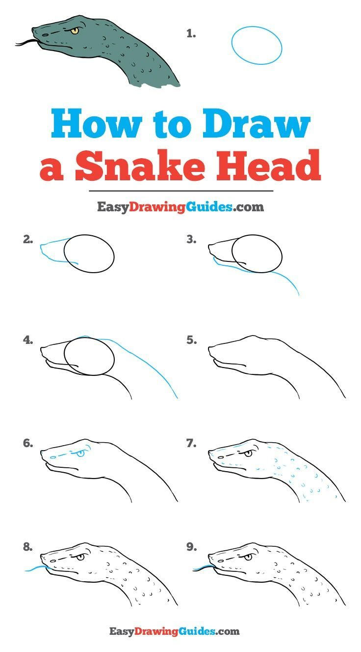 How To Draw A Snake Head Really Easy Drawing Tutorial Draws
