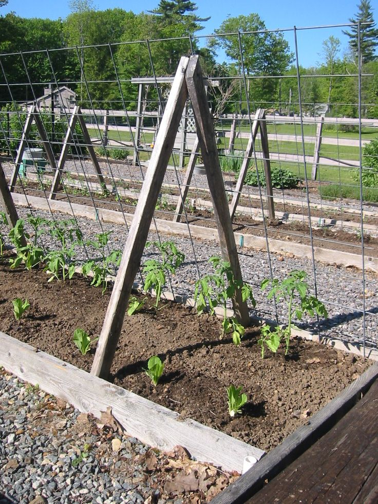 how to make an allotment fence
