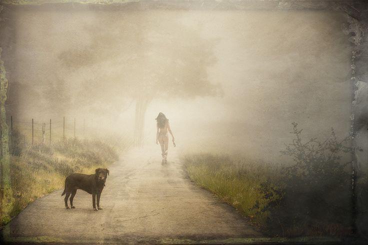 Image result for site:pinterest.com dog in fog