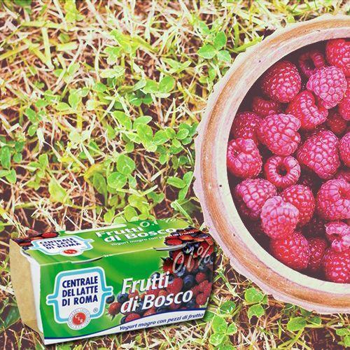 Dolci scoperte di primavera... #yogurt magro con pezzi ai #fruttidibosco http://www.centralelattediroma.it/prodotti/yogurt-magro-frutti-di-bosco/