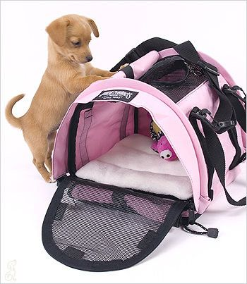 hip my SturdiBag Assembled! Colors: The Small Cube SturdiBag™ is our smallest and lightest pet carrier. Designed specifically for very small pets, kittens and puppies up to 4-5 pounds. All SturdiBags