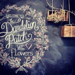 Chalk art for Dandelion Florist in Kew.