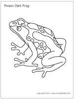 poison dart frog coloring page