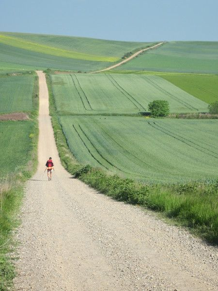 Miles and miles to think... life goal: walk the Camino de Santiago. Month long travel from town to town for the Castillo pilgrimage. So cool!