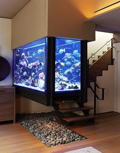 30 Fish Tank Ideas That Will Make Any Home More Lively!