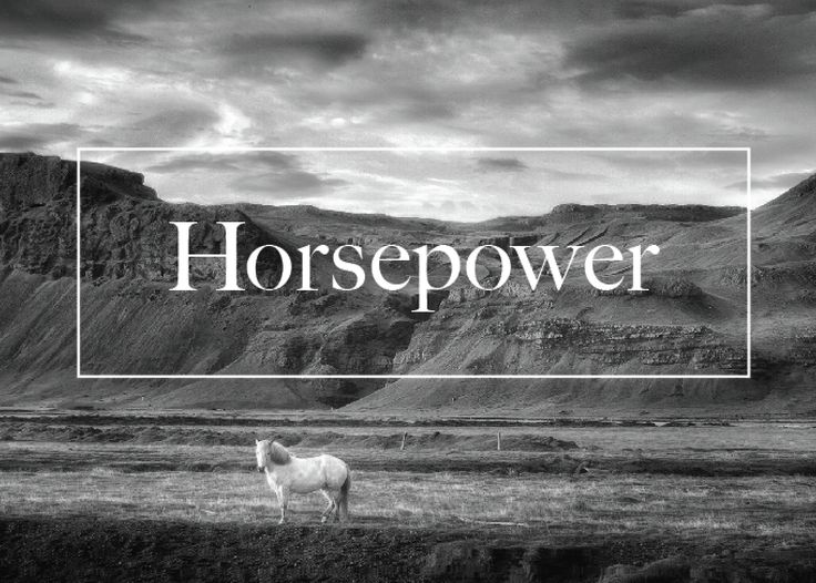 Logodesign by Emma Ask #horse #horsepower