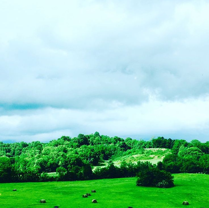 From spring of 2017   #spring #cloudy #photography #darkspring #green #trees #grass #farm #farmland #country #summer #thunderstorm #rain #rainphotograohy