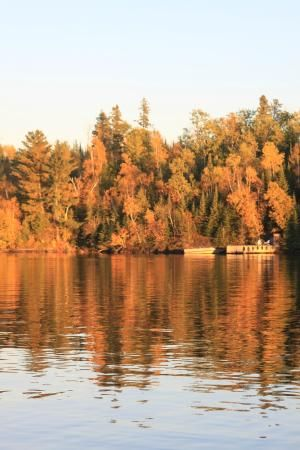 Fall leaves in the harbour by Anicinabe Park | 955 Golf Course Road, Kenora, Ontario P9N 4J1,