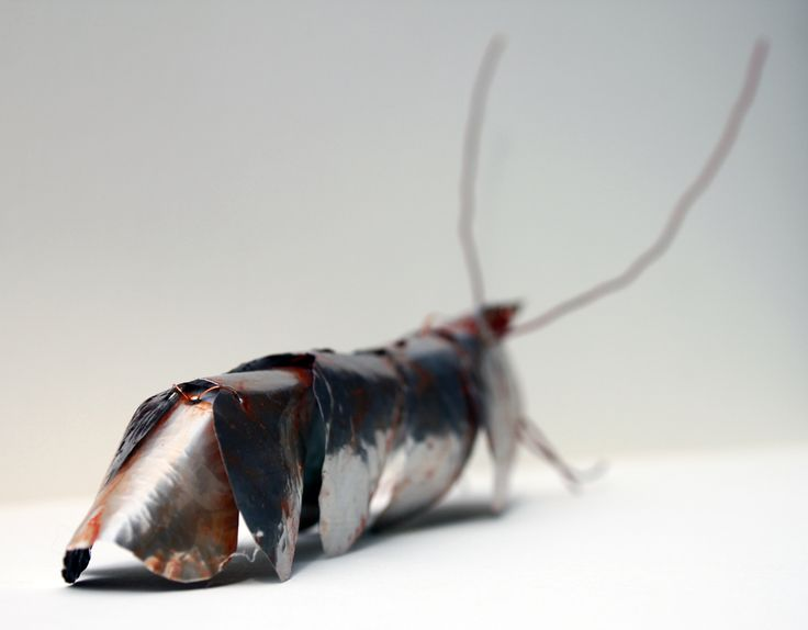 Prawn. Created from drinks cans and copper wire and coloured with permant markers.