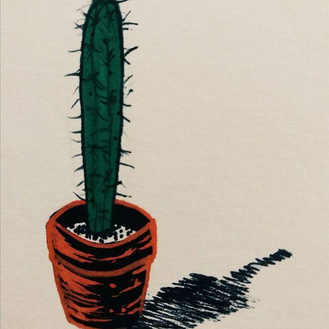 As plantas da janela. #cacto #cactus #desenho #draw #art #arte #illustration #ilustração #aracaju