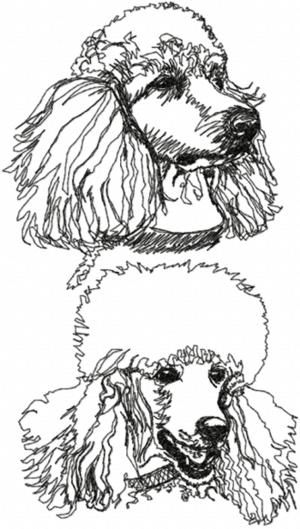 So fun....Advanced Embroidery Designs - Poodle Set