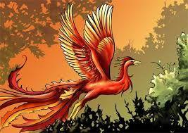 """Képtalálat a következőre: """"szerelem-madár - törött   szárnyak"""""""