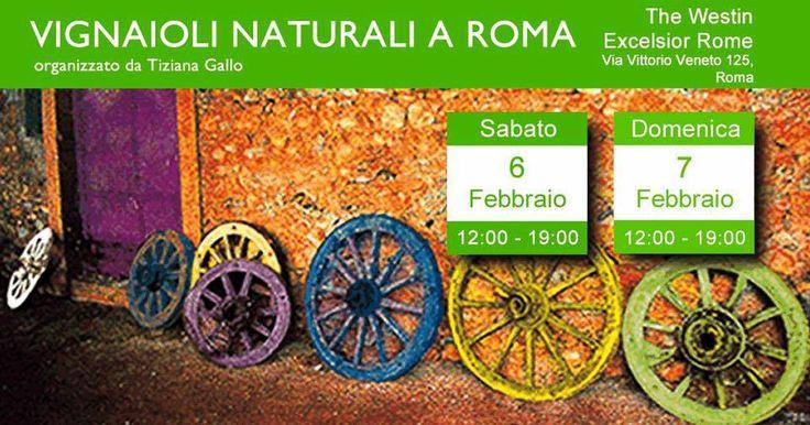 Vignaioli Naturali a Roma il 6 e 7 febbraio 2016 http://intothewine.org/2016/02/03/vignaioli-naturali-a-roma-il-6-e-7-febbraio-2016/