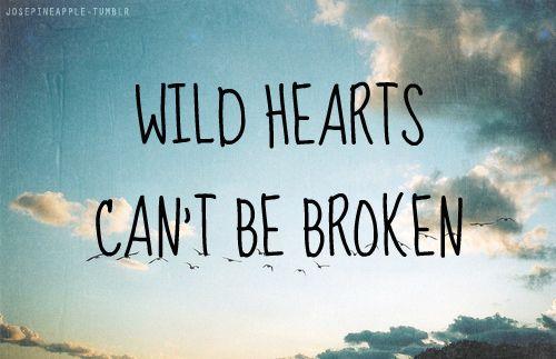 Wild At Heart Quotes Quotesgram: Quotes Wild Heart. QuotesGram