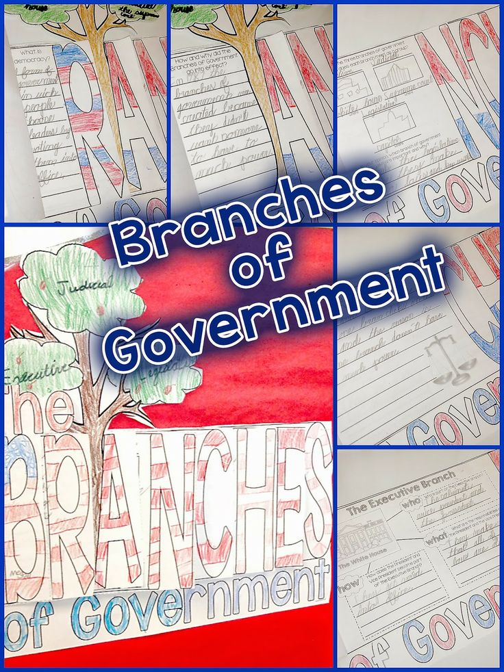 Teaching the Branches of Government can be FUN and Interactive!   Check out this blog post for some videos and activities that you can use to teach the Branches of Government.  There is a writing FREEBIE in the post as well!  #secondgrade, #simplyskillinsecond, branches of government