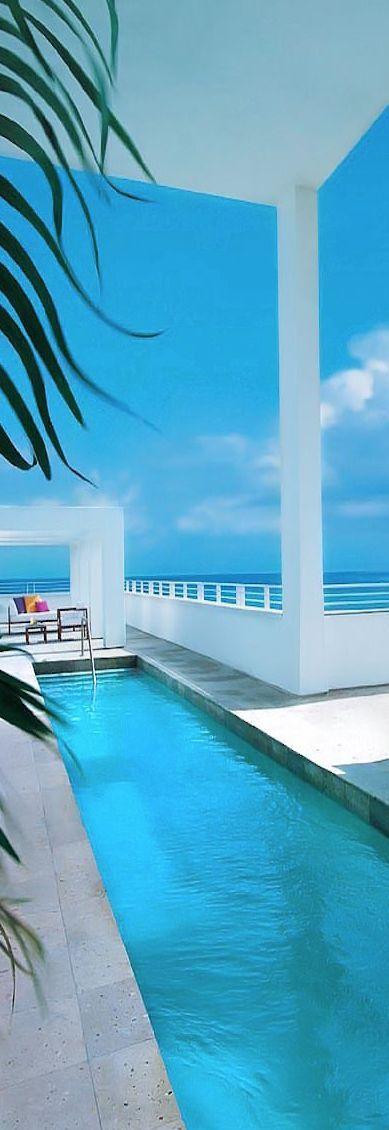 Shore Club, South Beach Miami | @༺♥༻LadyLuxury༺♥༻ Travel@spotlightontravel.net for info and quotes!