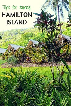 Hamilton Island, Australia is like Pleasantville, a place where people get around on golf carts, spend days on the sun-soaked beaches and relax. Here are tips for making the most of your time on the island.