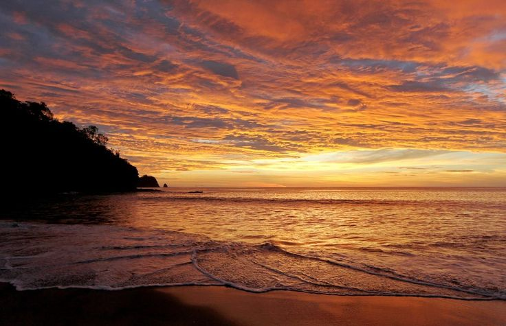 Yogis, Shamans, and Ayahuasca: Seeking Answers in Costa Rica