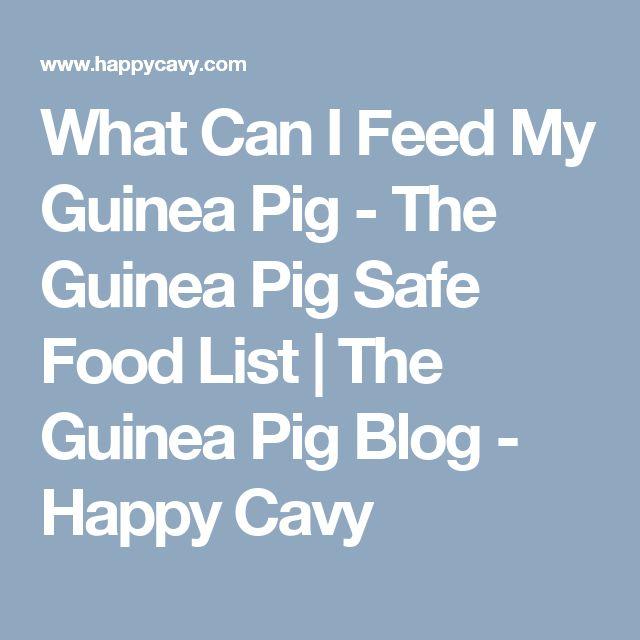 Happy Cavy Safe Food List