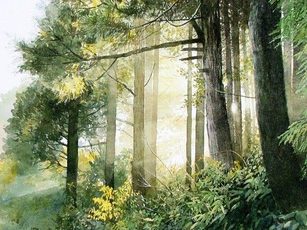 Light through the trees (Abe Toshiyuki Watercolor)