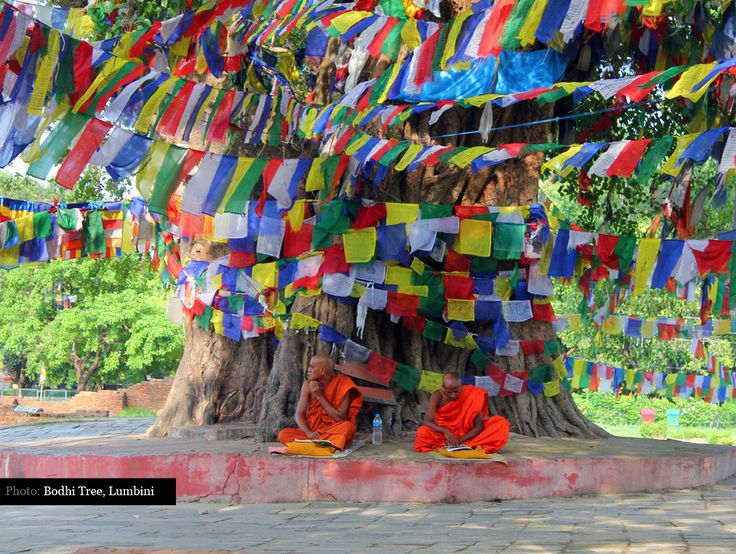 Two Monks sitting under a Bodhi tree covered in prayer flags in Lumbini Nepal.