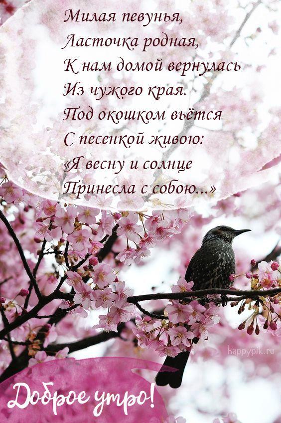 Открытки с весенним добрым утром со стихами, привет астрахани днем