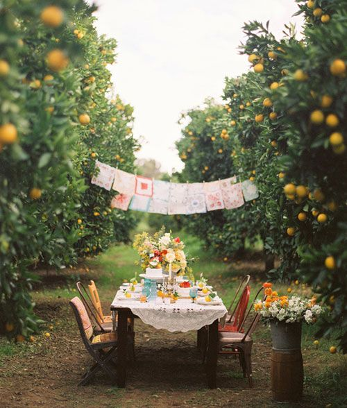 dinner in the orchard... I know there won't be apples in July, but cute idea for some fun wedding party pics