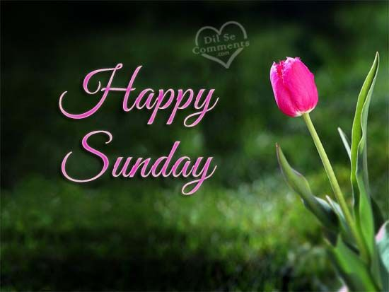 Best 25+ Sunday Wishes Ideas On Pinterest