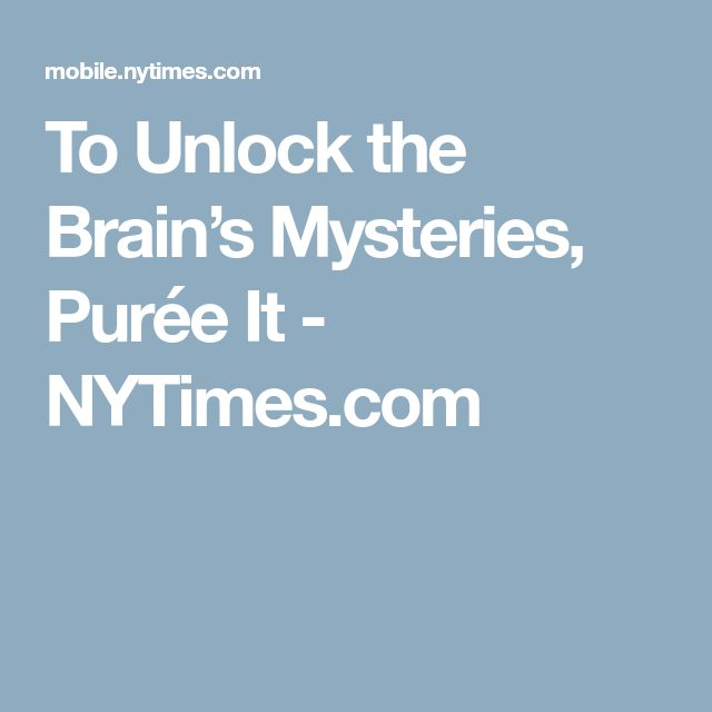 To Unlock the Brain's Mysteries, Purée It - NYTimes.com