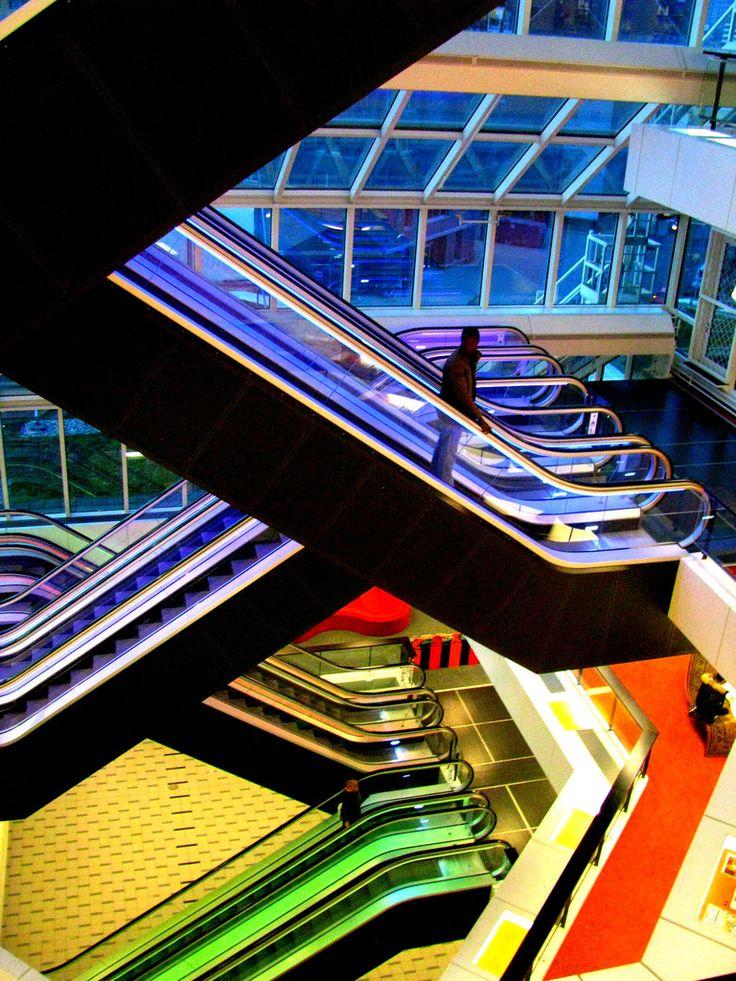 Rotterdam Library By:Bhakti