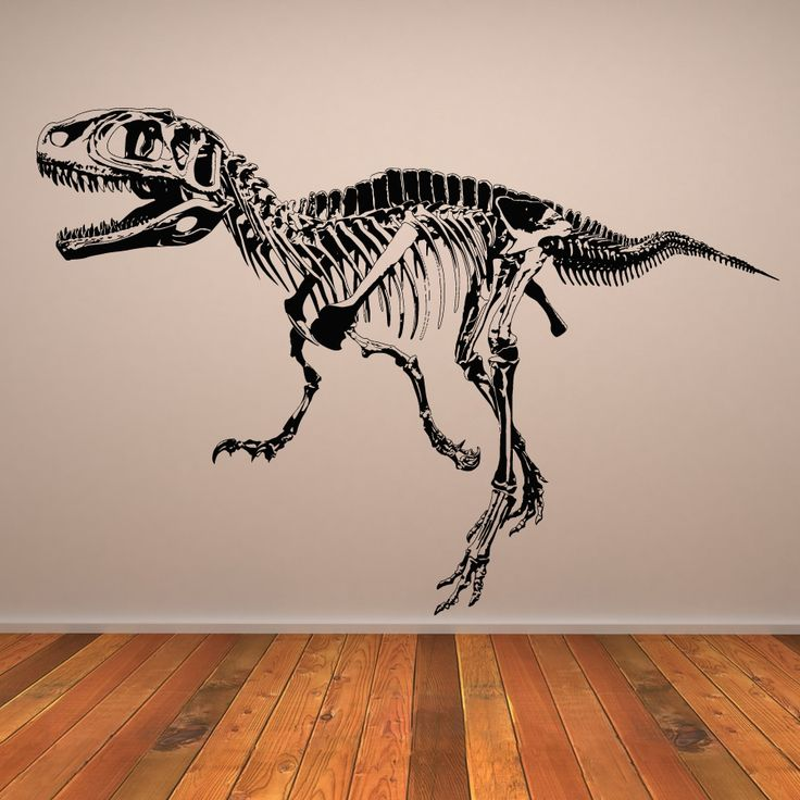Large Wall Decals | Rex Skeleton Dinosaurs Wall Art Sticker Wall Decal Transfers