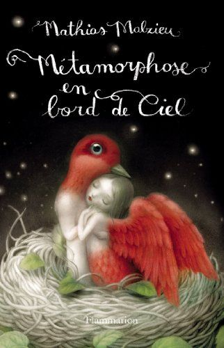Métamorphose en bord de ciel: Amazon.fr: Mathias Malzieu: Livres