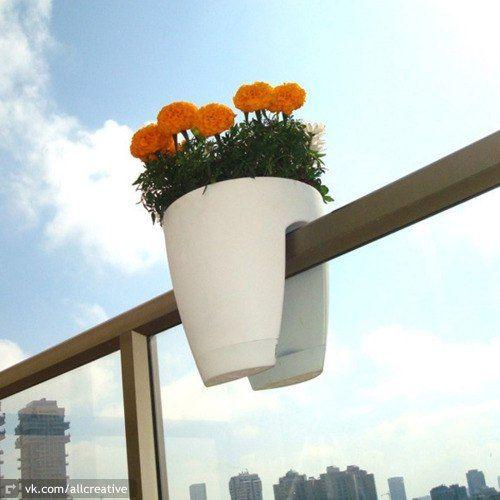 Цветы на балконе » Смешные Анекдоты Истории Цитаты Афоризмы Стишки Картинки прикольные Игры