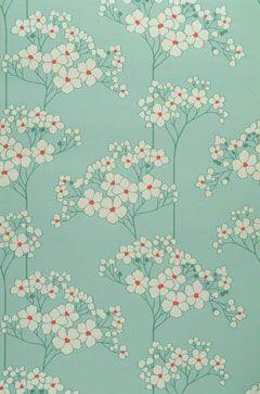floral                                                                                                                                                                                 Plus