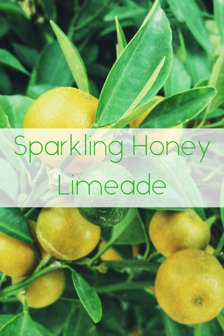 Sparkling Honey LimeadeIn a saucepan over medium heat bring the ginger, honey and water to a quick boil.