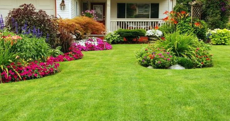 Front yard plants beautiful design about front yard for Flower garden ideas on a budget
